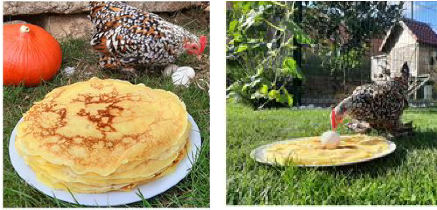En-tete-crepes-facebook